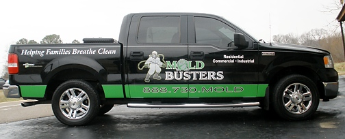 Mold Busters Truck
