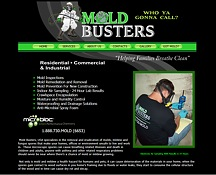 Mold Busters Web Page